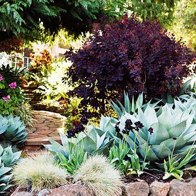 Los Gatos garden; Apr'13; 16299 Cypress St., Los Gatos, Garden