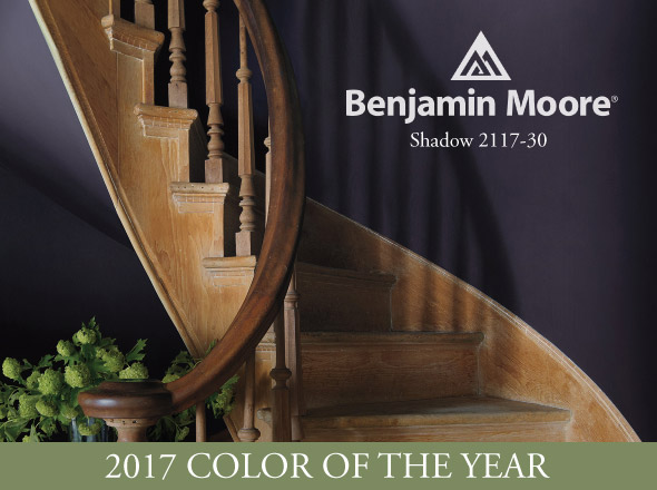 What is the 2017 Color of the Year?