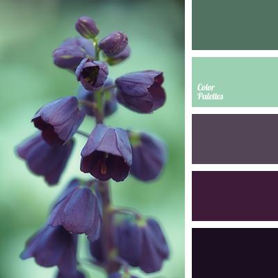 color-palette-2756