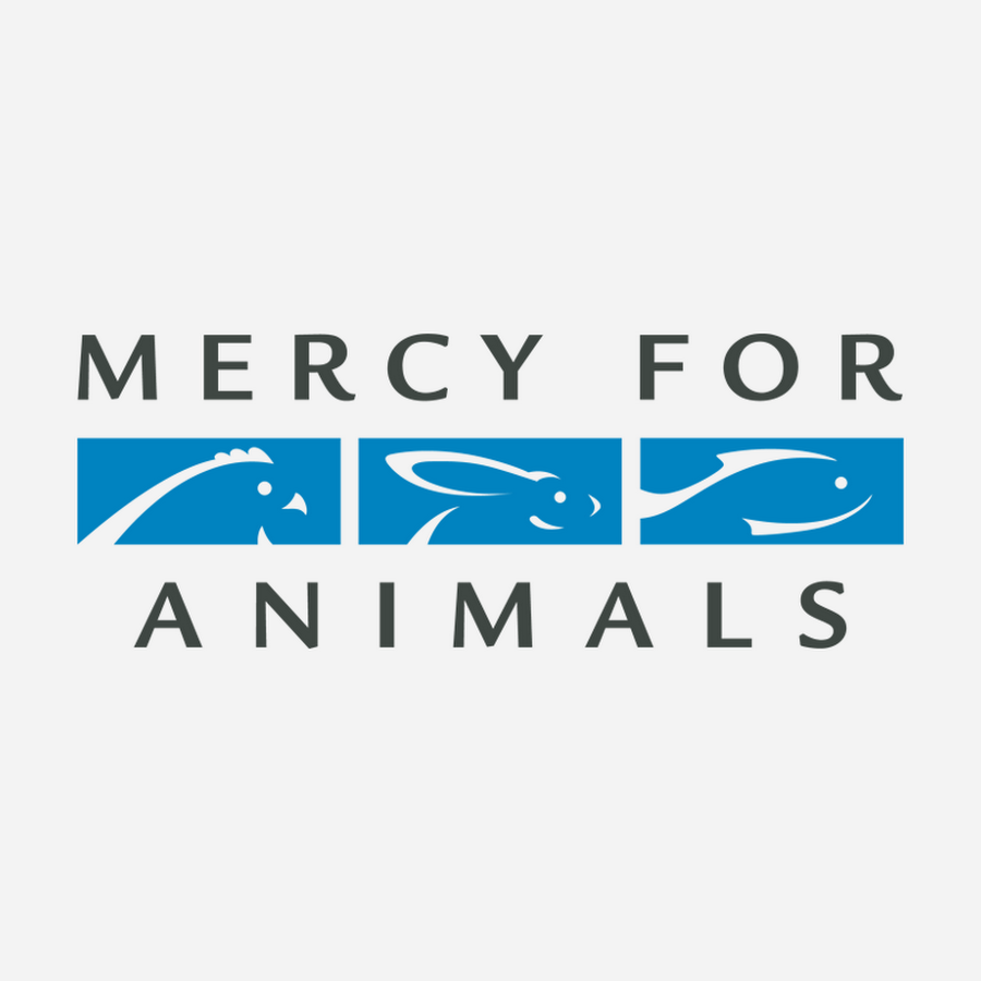 Season for Giving to the mercy for animals foundation