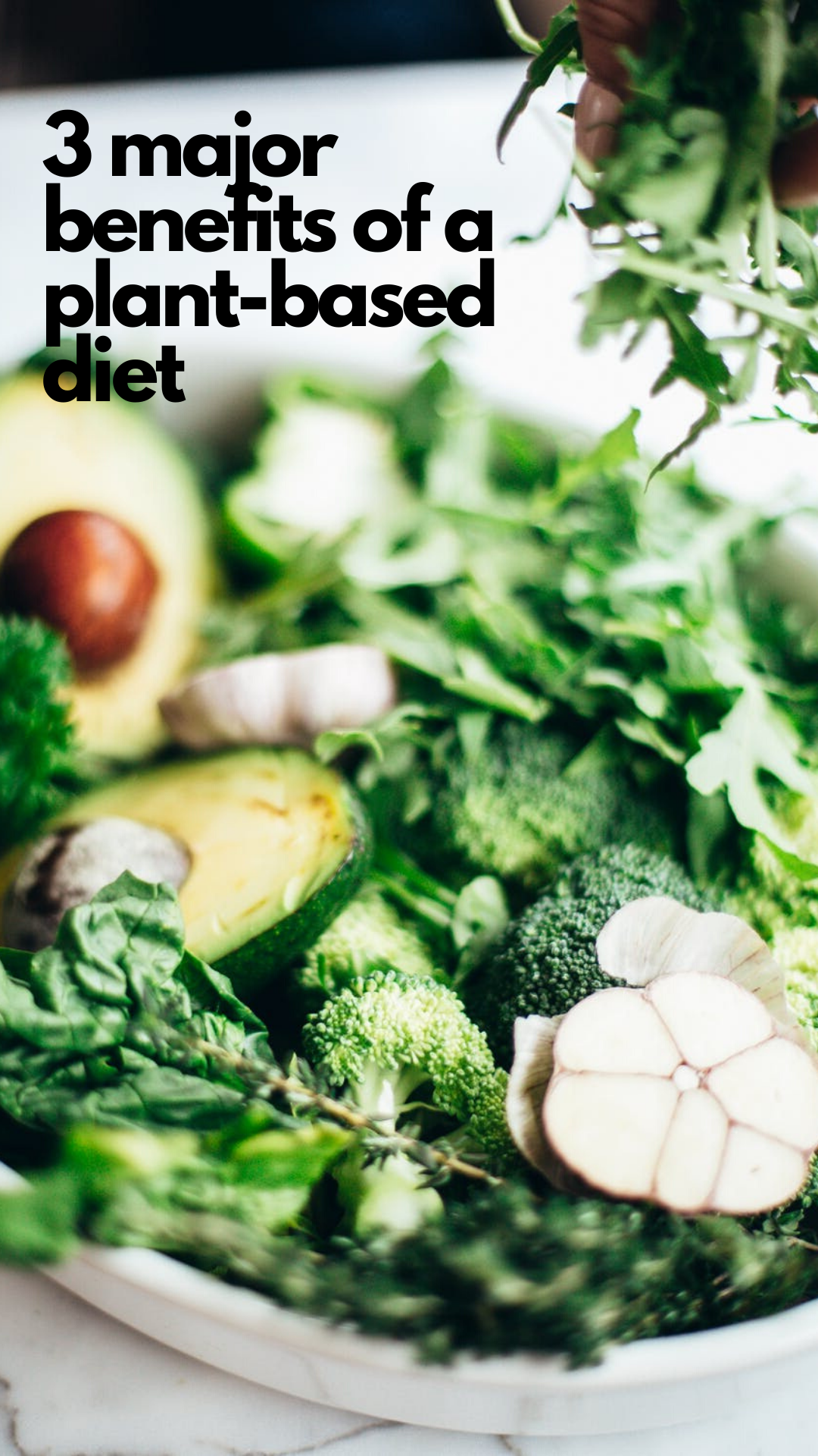 3 major benefits of a plant-based  diet