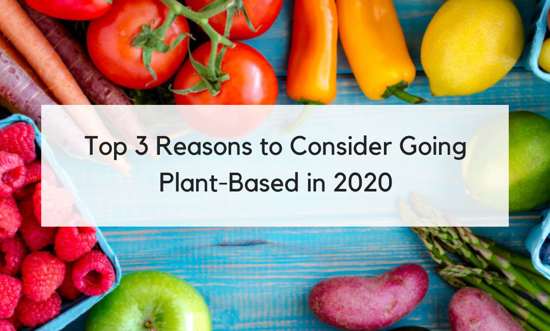 Top 3 Reasons to Consider Going Plant-Based in 2020